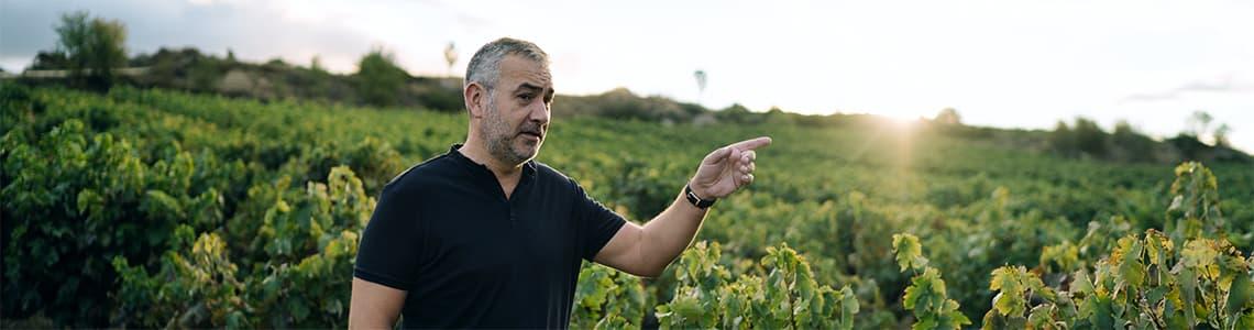 Bodegas y Vinedos Pujanza Weine