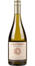 Caliterra Chardonnay Tributo 2013