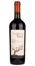 Caliterra Shiraz Tributo 2012