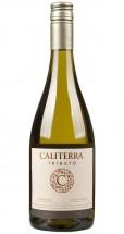 Caliterra Chardonnay Tributo 2015