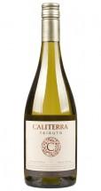Caliterra Sauvignon Blanc Tributo 2014