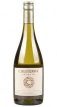 Caliterra Sauvignon Blanc Tributo 2016