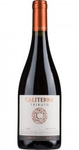 Caliterra Shiraz Tributo 2014