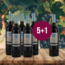 5+1 Superdeal: 6 Flaschen Embruix de Vall Llach 2018
