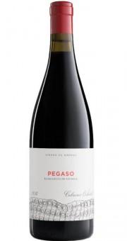 Pegaso Barrancos de Pizarra 2014 - Telmo Rodríguez