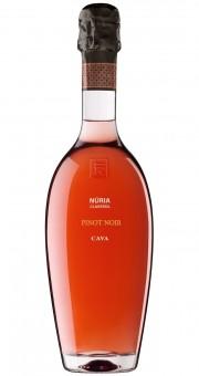 Sumarroca Cava Nuria Claverol Pinot Noir Rose 2014