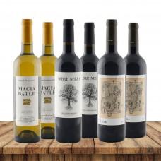 Weinreise Mallorca
