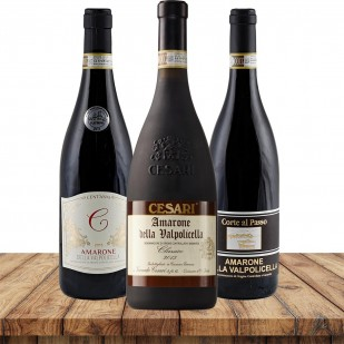Amarone Premium Selektion