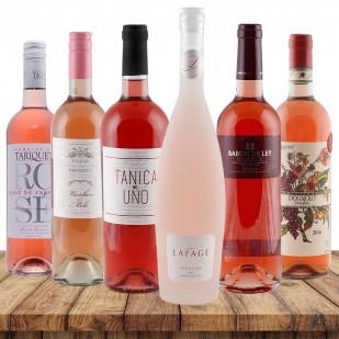 Rosé-Favoriten
