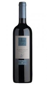 Jeroboam (5,0 L) Idus de Vall Llach 2014 in 1er...