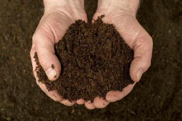 Eisen, Sand und Kalk bestimmen die Böden im Weinbaugebiet Toro. Das hat großen Einfluss auf die Trauben und damit auch die Weine, die aus ihnen entstehen.