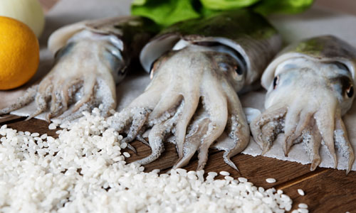 Seppie: Tintenfisch-für-Risotto