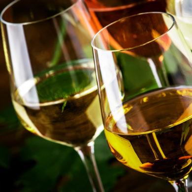 Durch aufwändige Methoden bei der Pressung und kurze Transportwege enstehen aus der Verdejo Weißweine mit einzigartigem Charakter.