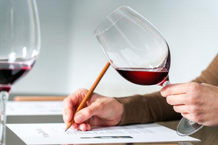 Professionelle Weinverkostung Rotwein