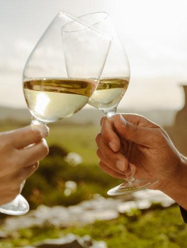 Egal, ob Airén, Trebbiano, Chardonnay oder einer der anderen Vertreter der Weißwein-Familie: Das sollten Sie über die hellen Tropfen aus aller Welt wissen.