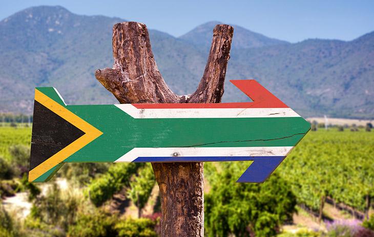 Weinbau in Südafrika