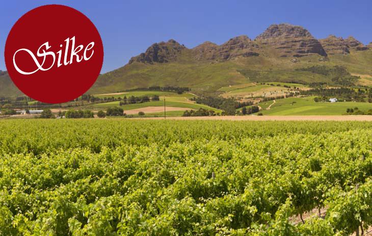 Silkes Blog: Weinland Südafrika