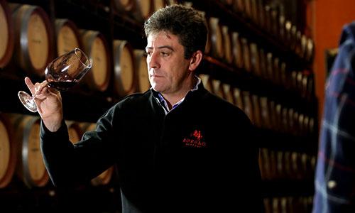 Borsao Taster   Silkes Weinblatt