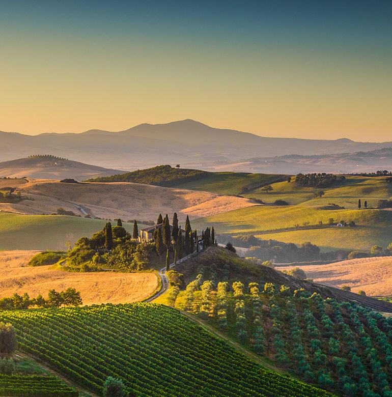 Was im Jahr 1938 als unbekannter Familienbetrieb begann, wird heute von Liebhabern italienischer Weine bisweilen sogar als Geheimtipp gehandelt .