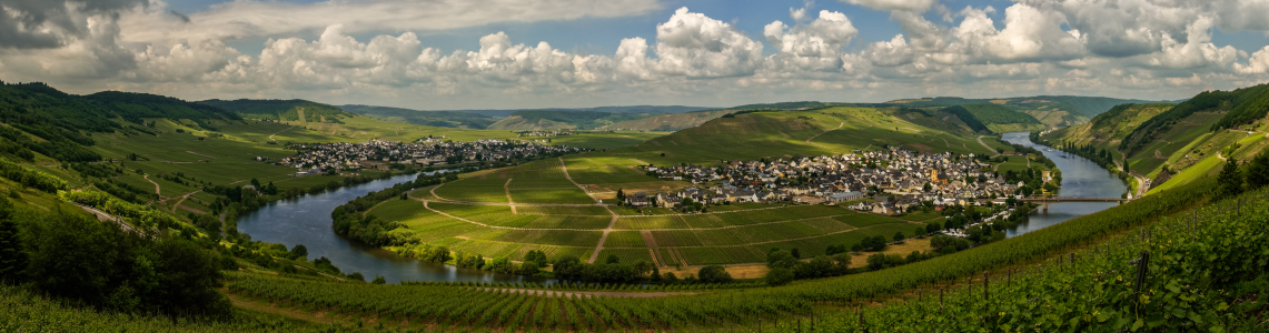 Landschaft und Weinbaugebiet an der Mosel