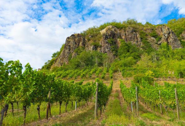 Weinbaugebiet Nahe in Deutschland