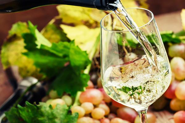 Weinbaugebiete in Deutschland 2 | Silkes Weinblatt