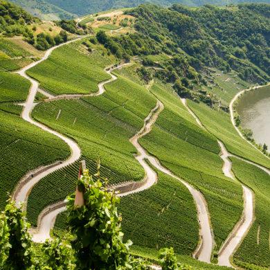 Rund um die Nahe gibt es zahlreiche Gesteinsarten, gutes Klima und beste Bedingungen für rote und weiße Weine. Gründe genug, diese Region näher kennenzulernen.