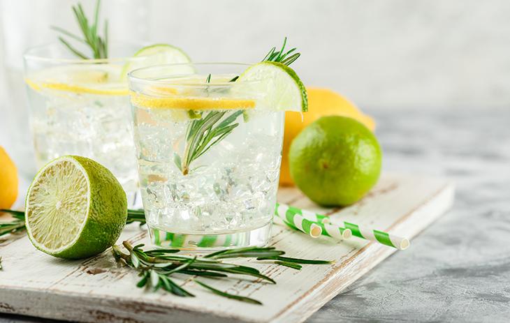 Wir informieren Sie über verschiedene Gin-Botanical-Kombinationen.