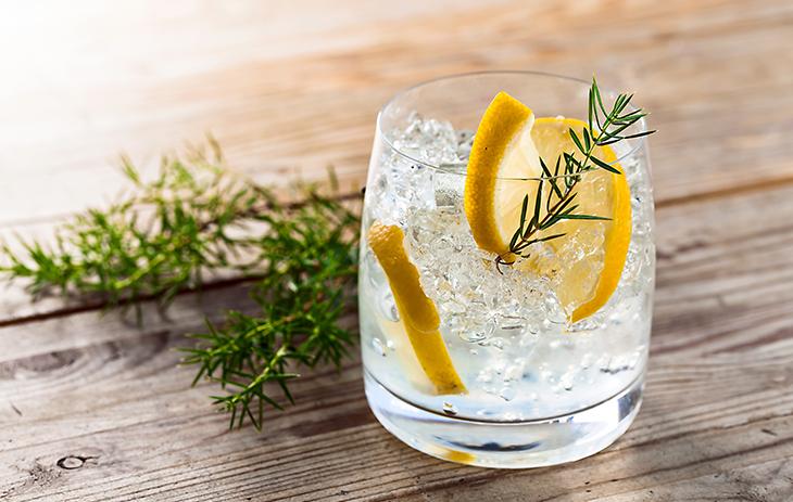 gin mischen zutaten | Silkes Weinblatt