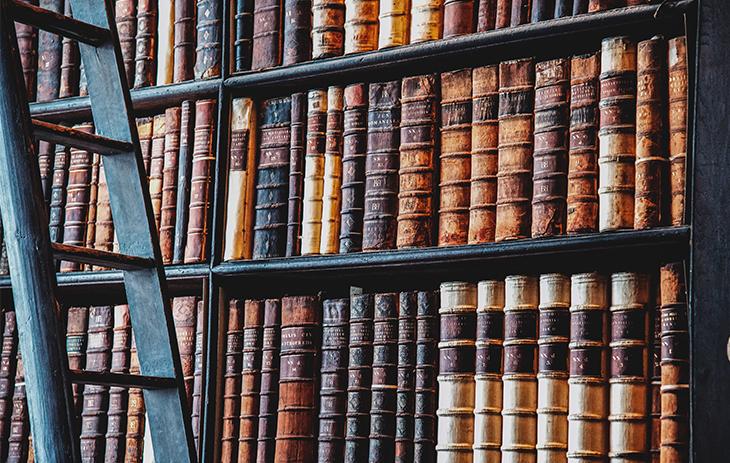 Holzleiter vor einem Bibliotheksregal