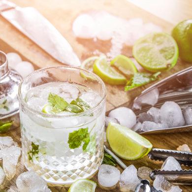 Wir haben Ihnen die acht beliebtesten Gin-Drink-Rezepte hier zusammengestellt | Silkes Weinblatt