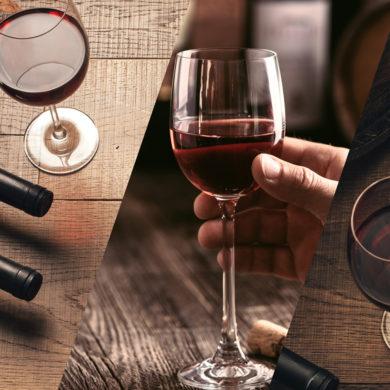 Für uns bei Silkes Weinkeller bietet der diesjährige Mai die Chance, auf der Vinexpo Bordeaux Kontakte zu knüpfen und uns inspirieren zu lassen.