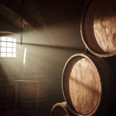 Den Lieblingswein oder gleich mehrere Favoriten immer in greifbarer Nähe haben: Was gilt es beim Anlegen eines eigenen Weinkellers zu berücksichtigen?