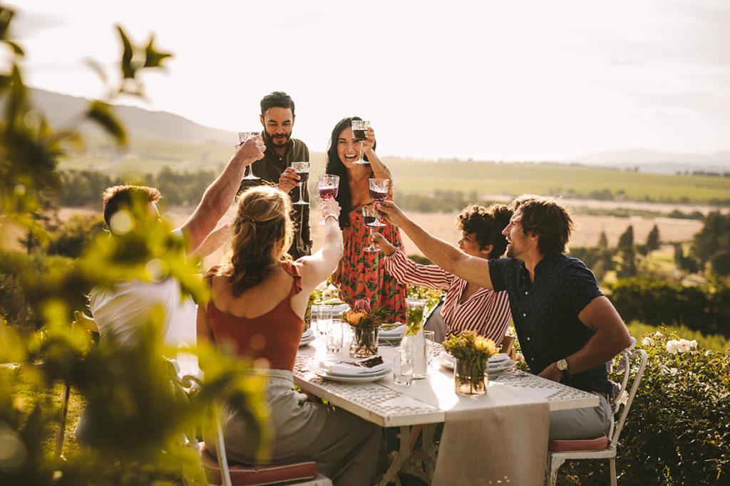 Mit dem Weinführer durch Südafrika