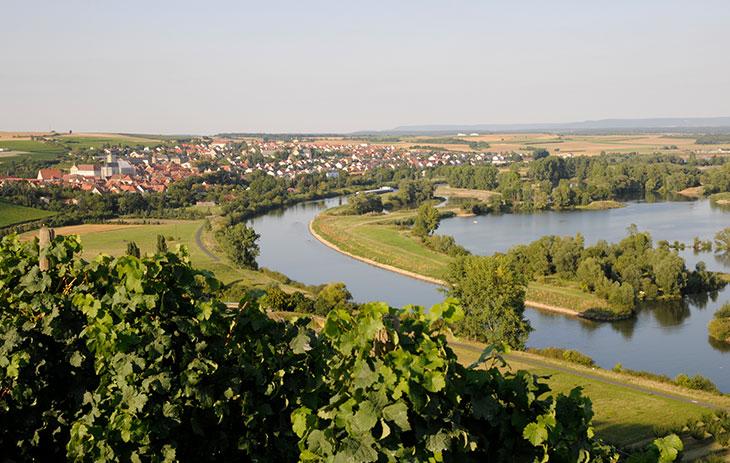 Stadt an einem Fluß im Weinbaugebiet Franken | Silkes Weinkeller