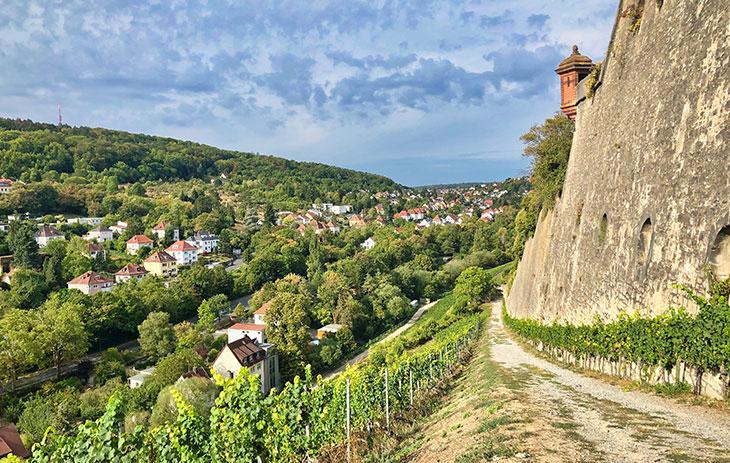 Stadt eingebettet zwischen Wald und Weinbergen im Weinbaugebiet Franken | Silkes Weinkeller