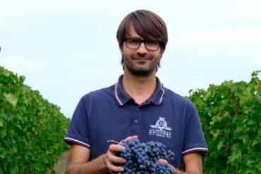 Jonathan Ducourt von Vignoble Ducourt   Silkes Weinkeller