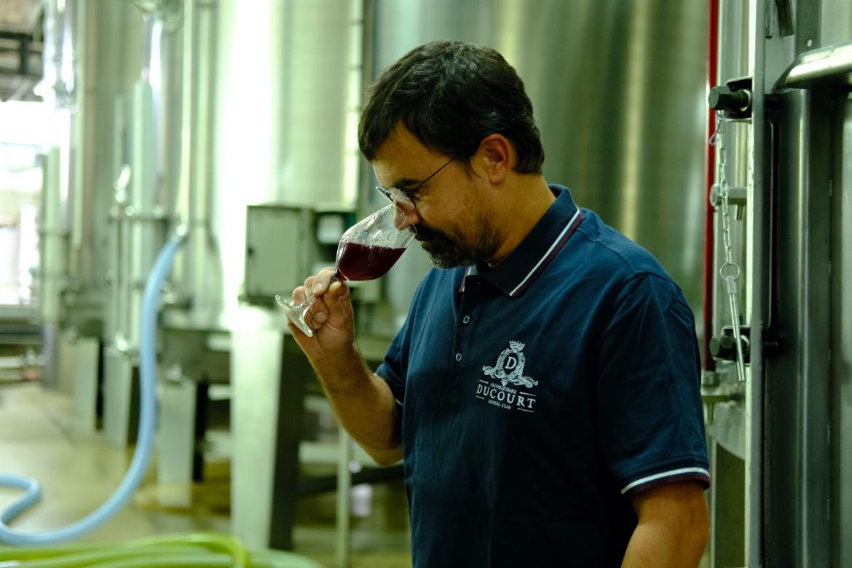 Weinverkostung bei Vignoble Ducourt | Silkes Weinkeller