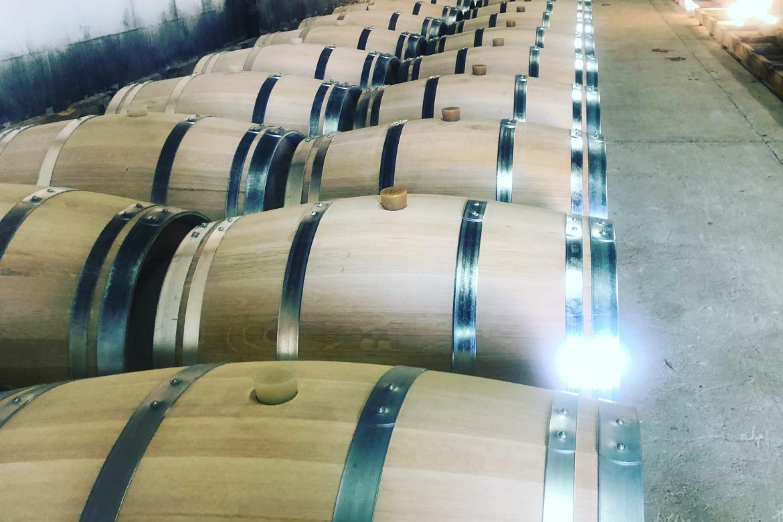 Weinfässer im Weinkeller bei Vignoble Ducourt | Silkes Weinkeller