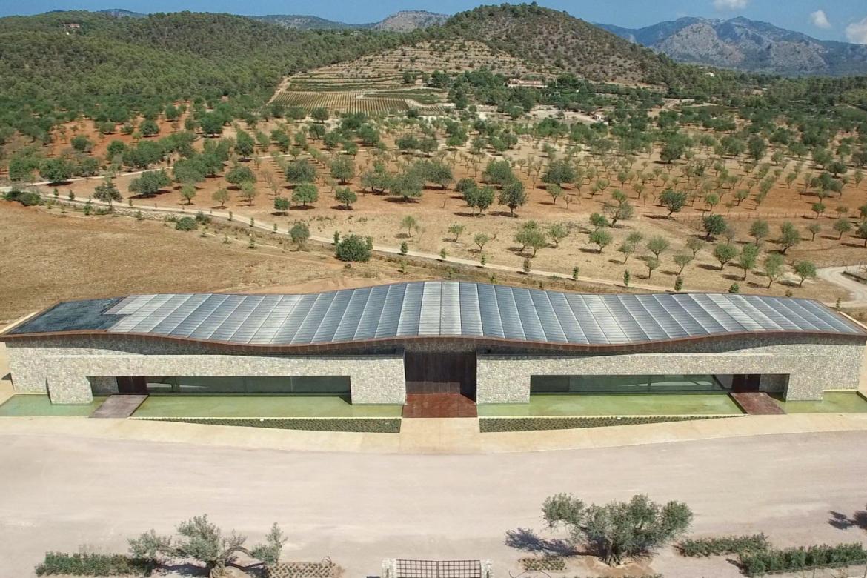 Die Bodega Son Mayol auf Mallorca   Silkes Weinkeller