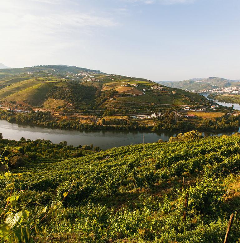 Fluss fließt durch Landschaft im Douro-Tal