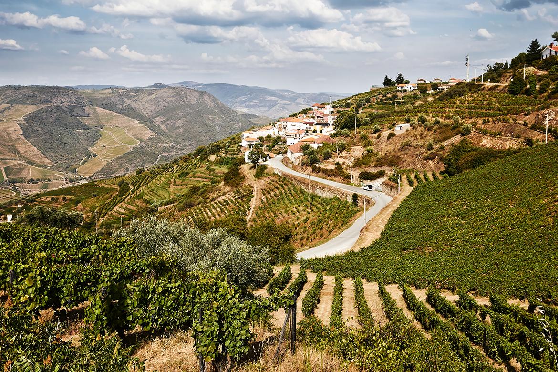 Portugal: Häuser stehen in bergiger Duoro-Landschaft