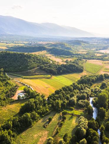 Bulgarischer Wein: Vogelperspektive auf Reben-Landschaft