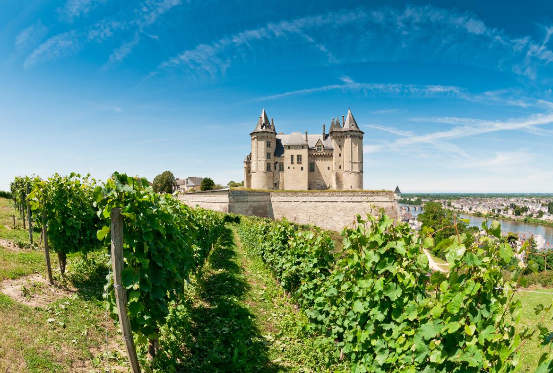 Grüne Reben vor Schloss an Fluss - Silkes Weinkeller