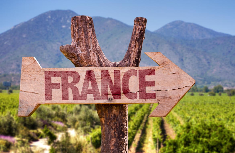 Holzweigweiser vor Reben und Gebirge - Silkes Weinkeller
