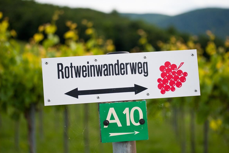 Markierung eines Rotweinwanderwegs | Silkes Weinkeller