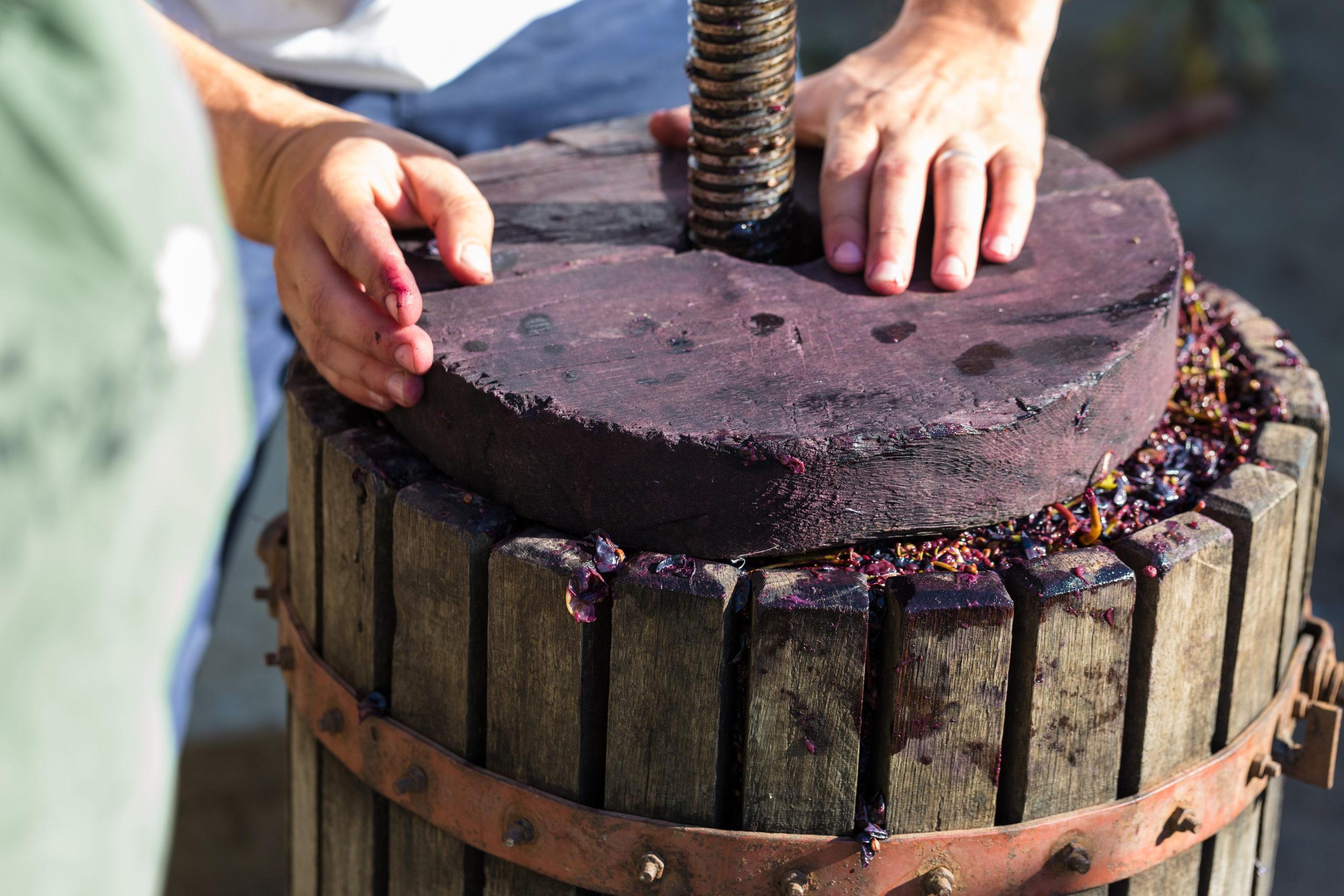 Weingeschichte: Person an einer Weinpresse   Silkes Weinkeller