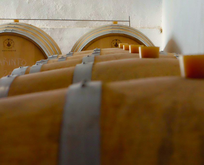 Weinfässer in Weinkeller