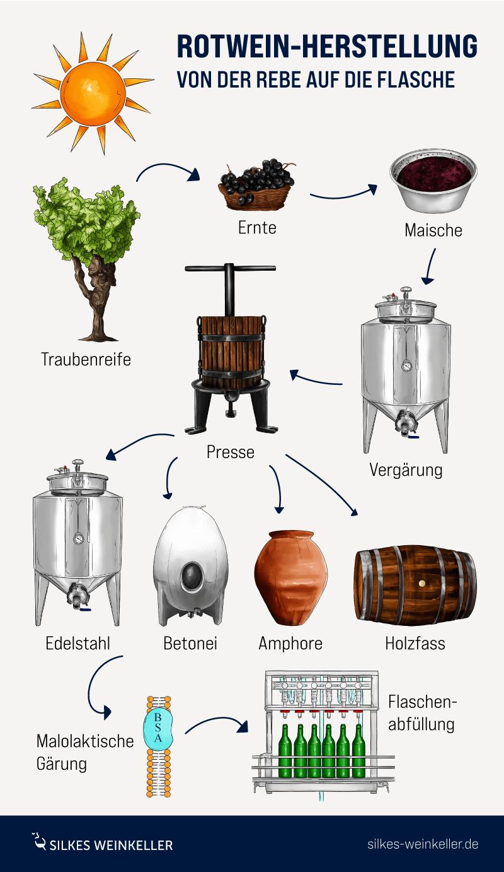 Grafik mit Elementen zur Rotwein Herstellung