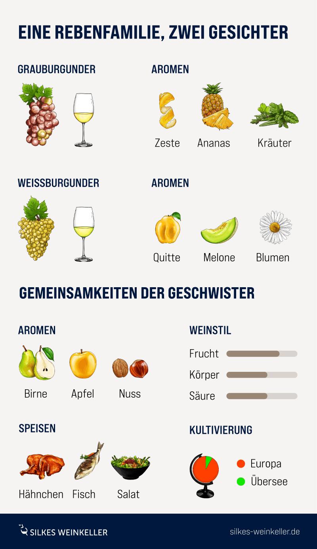 Infografik mit Elementen fürUnterschied Rebsorten